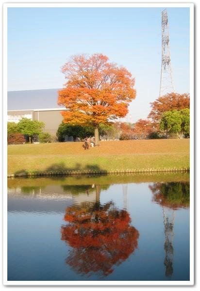 2013-11-16-11.jpg