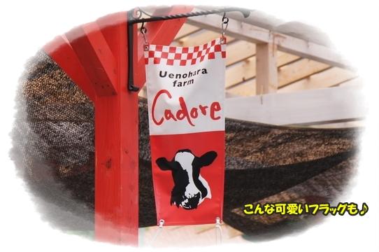 cadore2