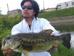 高屋川0501472jpg