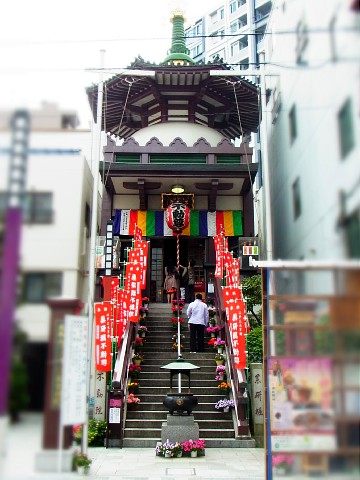 miyakoshigatsu02.jpg