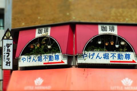 miyakoshigatsu19.jpg
