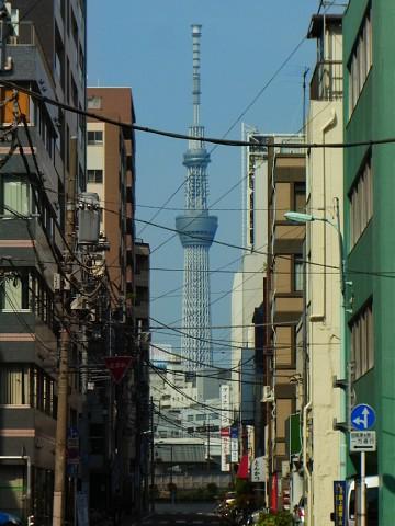 miyakoshigatsu31.jpg