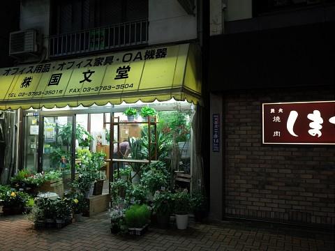 murakamiopen21.jpg