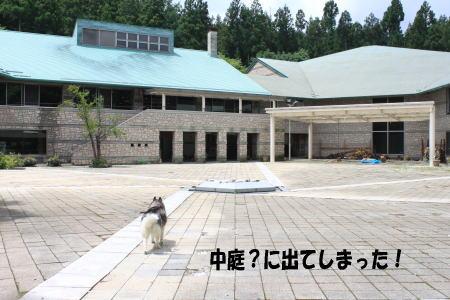 20130728_6.jpg