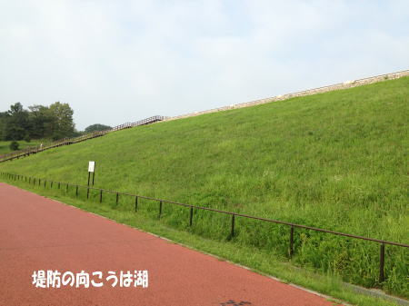 20130821_2.jpg