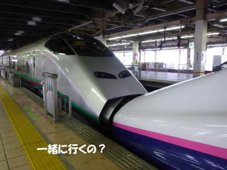 20130924_2.jpg