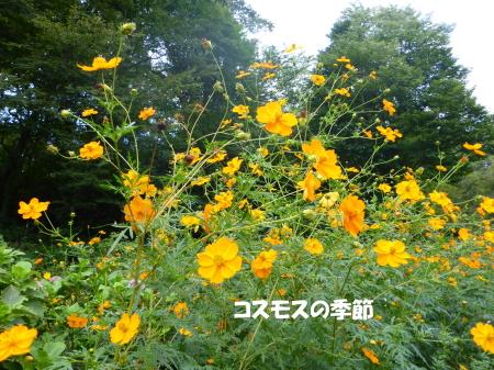 20130929_5.jpg