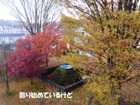 20131108_4.jpg
