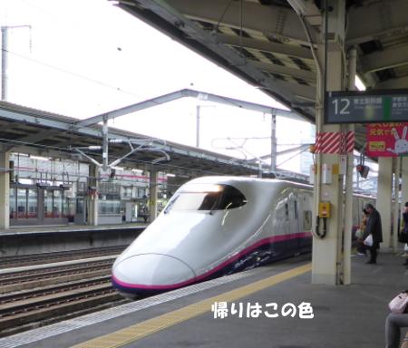 20131115_8.jpg