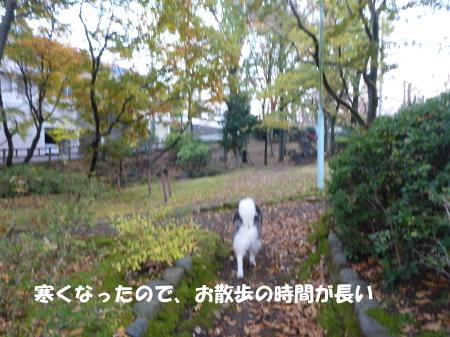 20131123_2.jpg