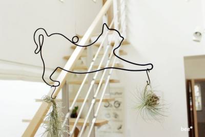 猫のハンギングプランツ