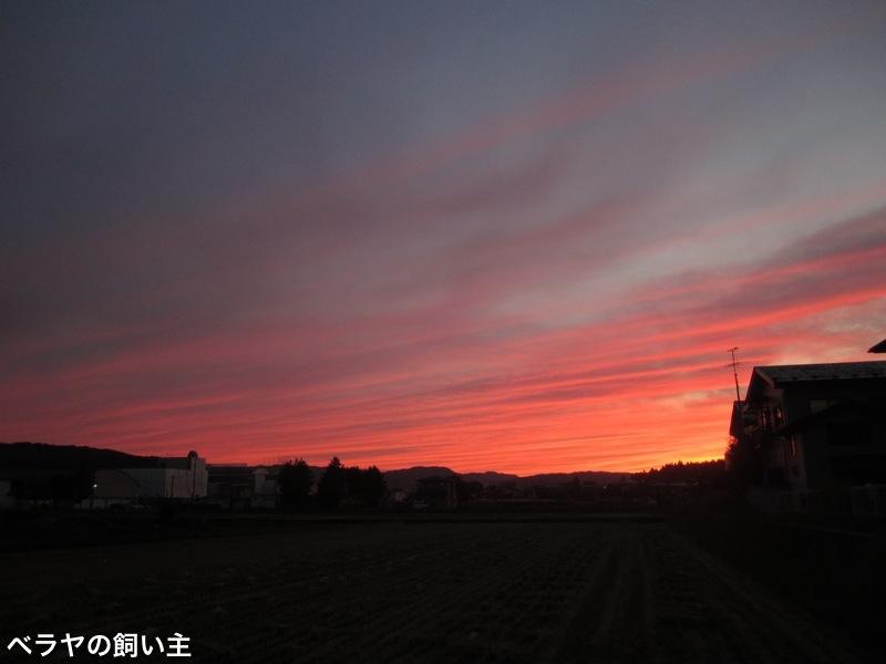 BNK-Sunset-IMG_0197.jpg