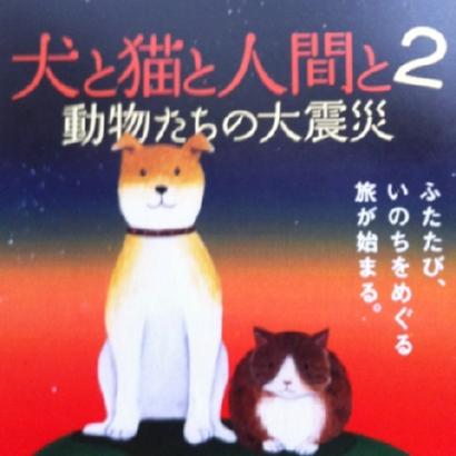 いぬと猫と人間と2