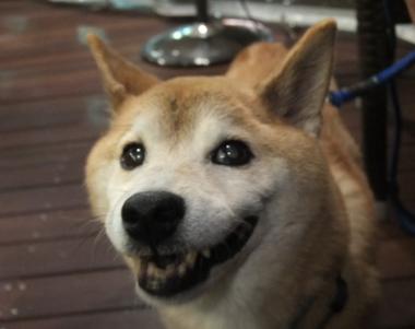 笑顔ですが