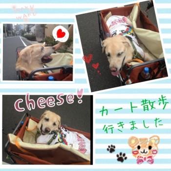 blog2_20130916232757c0b.jpg
