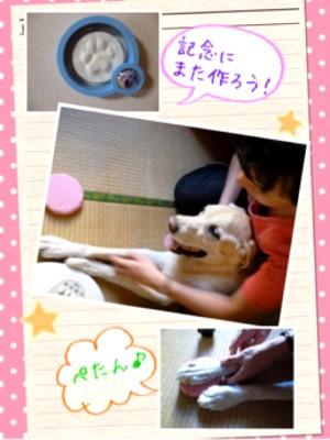 blog8_20130912230514761.jpg