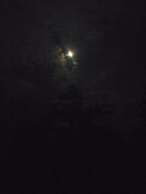 Night_Moon_on_Milk_road