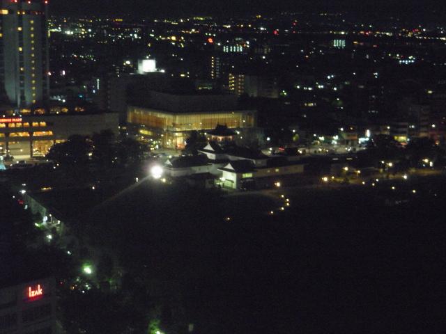 Toyamajyo_castle_from_Toyama_Pref_building