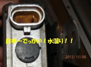 PB080003.jpg
