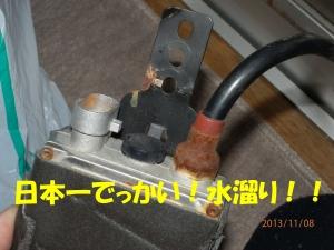 PB080004.jpg