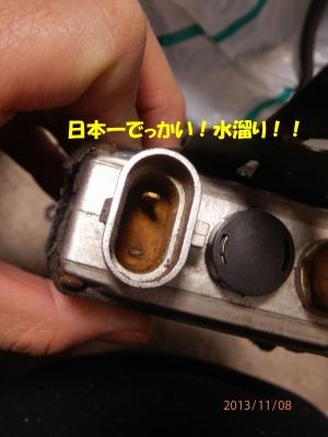 PB080009.jpg
