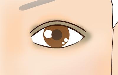 井川遥風アイメイク カーキカラーを入れる箇所を表したイラスト画像