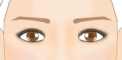 井川遥風眉メイク 眉の形を表したイラスト画像