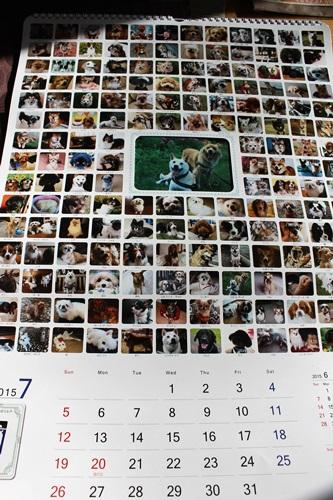IMG_6953カレンダー