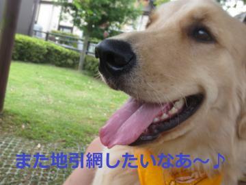 IMG_2113_convert_20130721204315.jpg