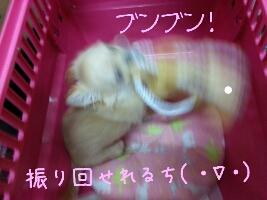 fc2_2013-06-20_09-39-15-508.jpg