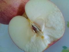 りんご_600