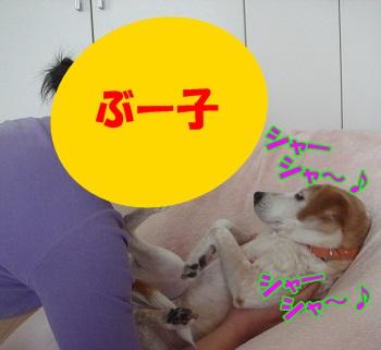 12_01_15_01_.jpg