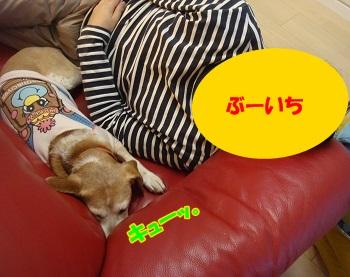 12_03_31_01.jpg