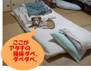 12_05_29_03.jpg