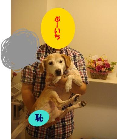 13_08_08_01.jpg