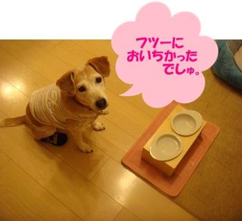 13_08_08_05.jpg