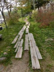 中禅寺湖畔の小路
