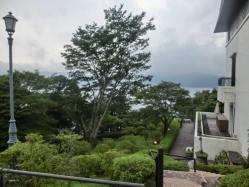 山のホテル 庭園