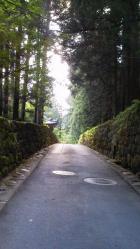東照宮付近の小道