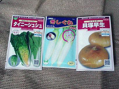 野菜の種 2013秋