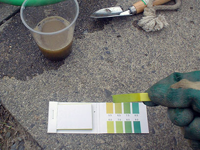 土壌のPH測定 2013秋2