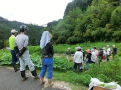 自然農15