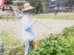 井原市で自然農を実践するH氏