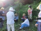 自然栽培講習会の様子