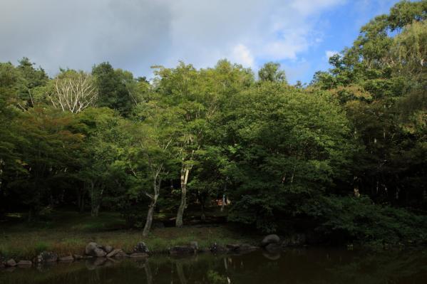 塩嶺小鳥の森