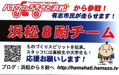 hama8_2013_001.jpg