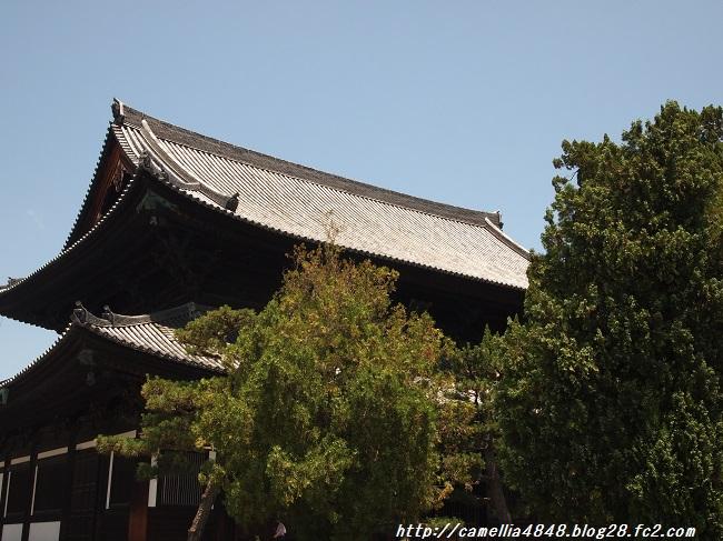 0629-touhukuji-2.jpg