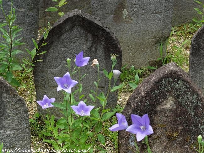 0706gangouji-5.jpg