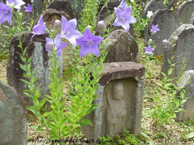 0706gangouji-6.jpg