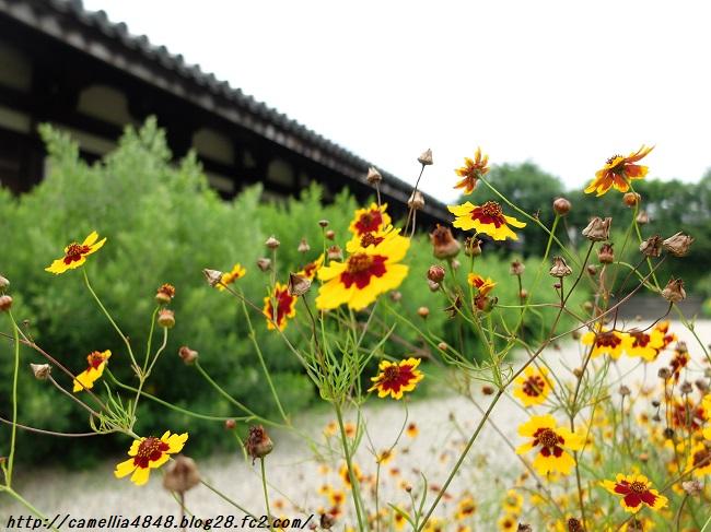 0706gangouji-9.jpg